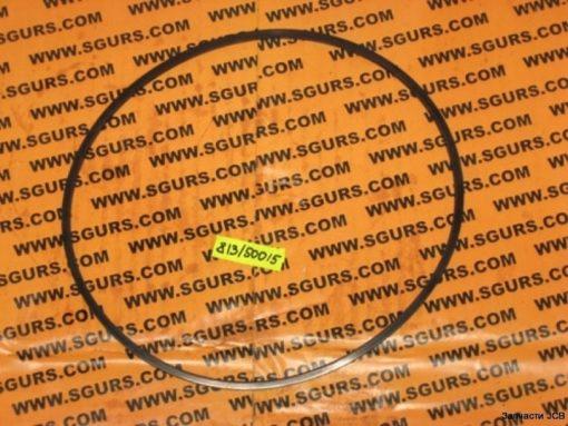 813/50015 Уплотнительное кольцо, сальник тормозного поршня (телескоп), SEAL